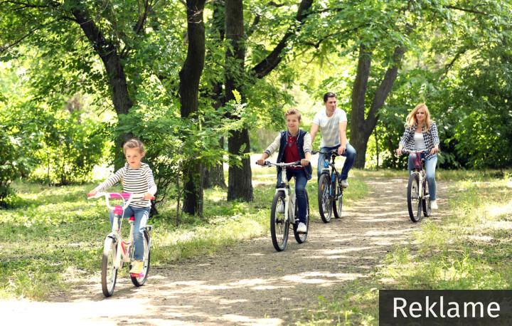 Sommer aktiviteter i Danmark